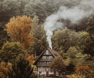 autumn, fallen leaves, and rustic image