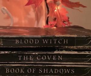 books, magic, and Fairies image