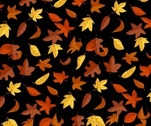autumn, background, and black image