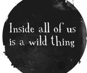 quotes, wild, and inside image