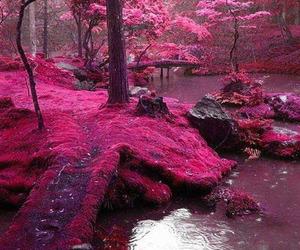 garden, lake, and tree image