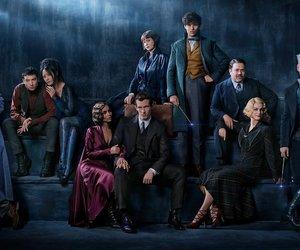 fantastic beasts, harry potter, and dumbledore image
