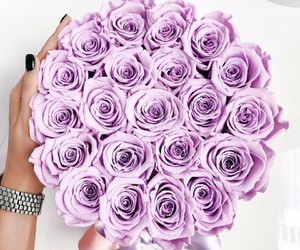 flowers, inspiration, and violet image
