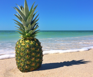 beaches, escape, and beachlife image