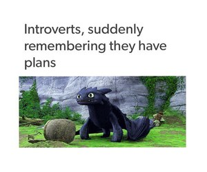 funny, introvert, and memes image