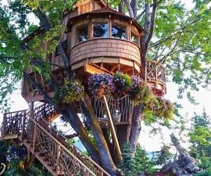 beautiful, tree house, and house image