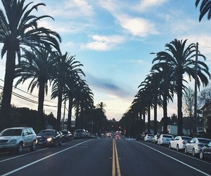 cali, palm, and california image