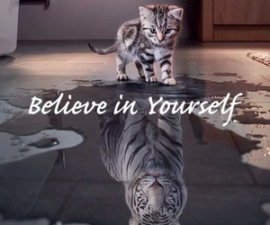 cat and quotes image