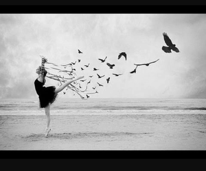 dance and Dream image
