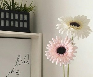 decor, flowers, and room image