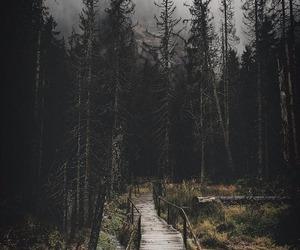 Image by Elisa.Niyaha~WaywardSister