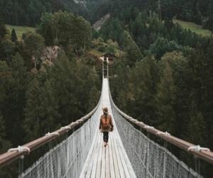 adventure, autumn, and bridge image