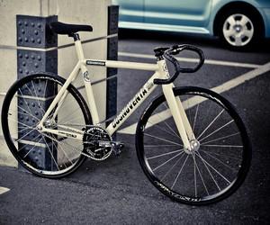 bike and fixie image