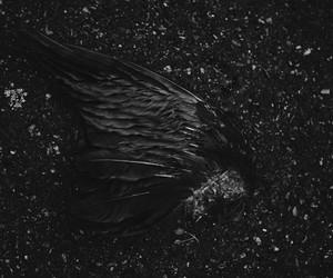 angel, art work, and blackandwhite image