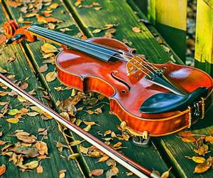 autumn, music, and violin image