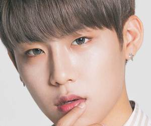 white, cute, and wanna one image