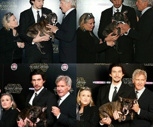 carrie fisher, cast, and dog image