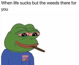 weed, funny, and high image