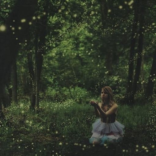girl, forest, and fireflies image