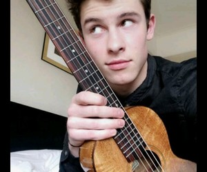 follow me and mendesarmy image