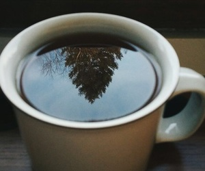 coffee, tea, and autumn image