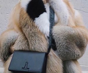 clutch, off white, and outfit image
