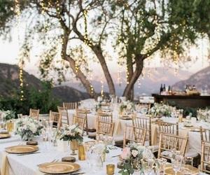 lights, wedding, and bride image