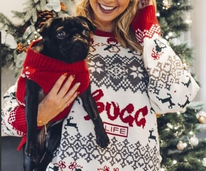 christmas, dogs, and festive image