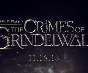 harry potter, newt scammander, and fanboy image