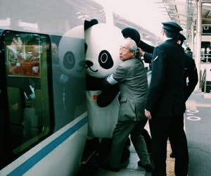 japan, panda, and funny image