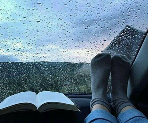 rain, book, and autumn image