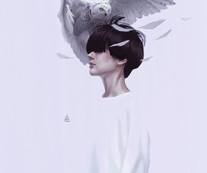 art, white, and owl image
