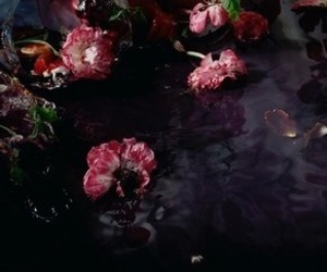aesthetic, burgundy, and flowers image