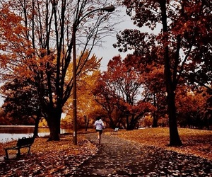 autumn, running, and fall image