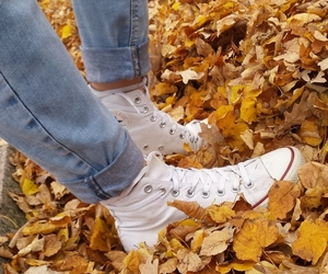 autumn, converse, and happy image