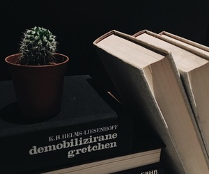 books, plant, and cactus image