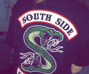 serpents, snake, and southside image