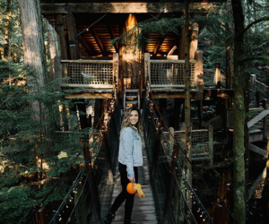 autumn, fall, and tree house image