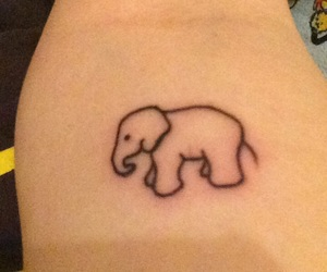 elephant, first, and tattoo image