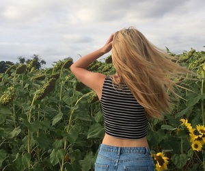 blonde, france, and sunflower image