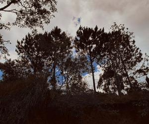 gestalt, landscape, and nature image
