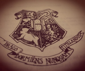 cool and harry potter image