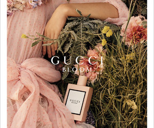 bloom, girly, and luxury image