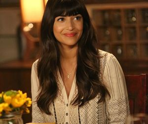 tv show and new girl image