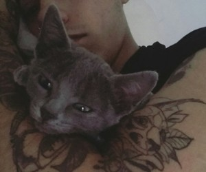 animals, tattoo, and love image
