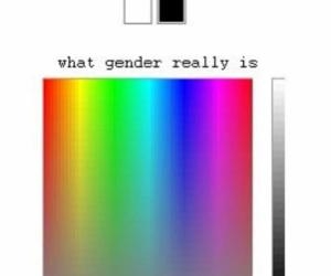 gender and lgbt image