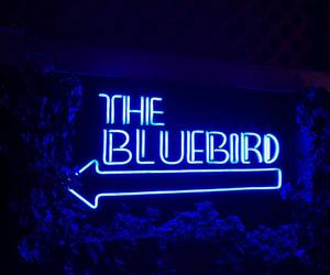 bars, bluebird, and neon signs image