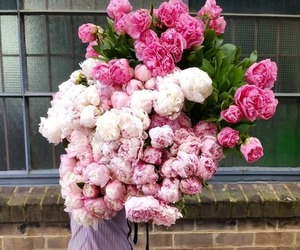 flowers, pink, and man image