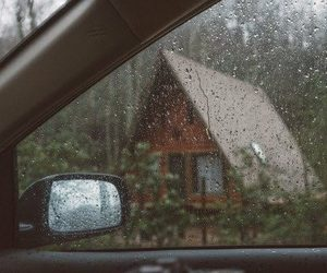rain, nature, and photography image