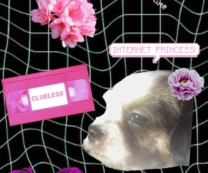 cutie, puppy, and okbye image